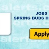 JOBS IN SPRING BUDS HIGH SCHOOL