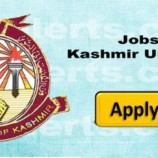 JRF Jobs in University of Kashmir