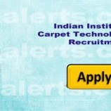 Jobs in  Indian Institute of Carpet Technology (IICT)