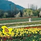 Restoration work of gardens, parks on full swing in Valley