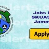 SKUAST Jammu JRF, Field Assistance Jobs