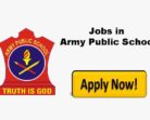 ARMY PUBLIC SCHOOL APS DHAR ROAD UDHAMPUR RECRUITMENT
